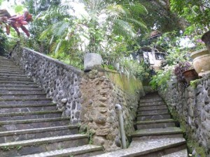 STAIRS AT GARDEN (2)
